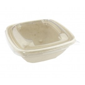 Sugarcane Bowl 500ml 13x13x6cm (50 Units)
