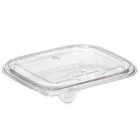 Plastic Lid for Deli Container PET Flat 14x12cm (63 Units)