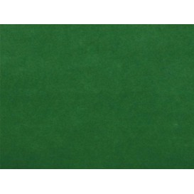 Airlaid Placemat Green 30x40cm (500 Units)