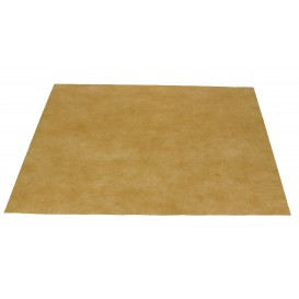 Novotex Placemat Cream 50g 30x40cm (500 Units)
