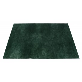 Novotex Placemat Green 50g 30x40cm (500 Units)