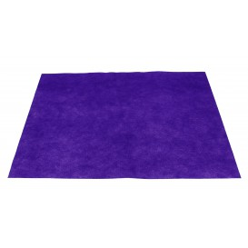 Novotex Placemat Lilac 50g 30x40cm (500 Units)
