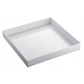 Plastic dienblad wit 30x30cm (9 eenheden)