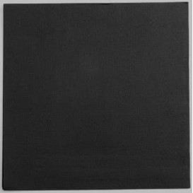 Paper Napkin Black 25x25cm 2C (100 Units)