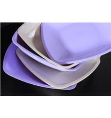 Plastic Plate Flat Beige Square shape PS 30 cm (12 Units)