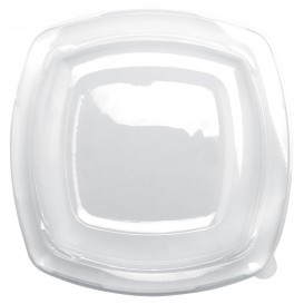 Plastic Lid Clear for Plate Square shape PET 23 cm (25 Units)