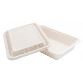 Sugarcane Container with Lid White 22,5x15x4cm (500 Units)