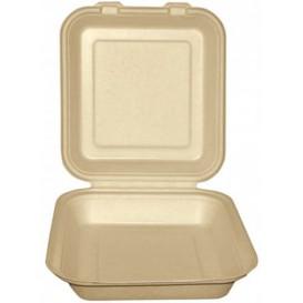 "Sugarcane Hinged Container ""Menu Box"" Natural 20x20x7,5cm (250 Units)"