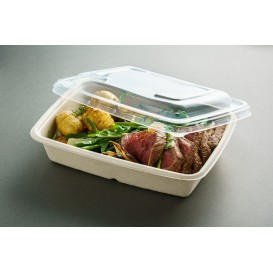 Plastic Lid PP for Container 23x16,5cm (150 Units)