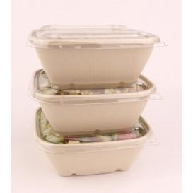 Plastic Lid PP Clear for Bowl 17x17cm (300 Units)