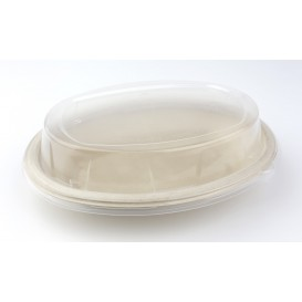Plastic Dome Lid PP for Tray 24x17cm (50 Units)