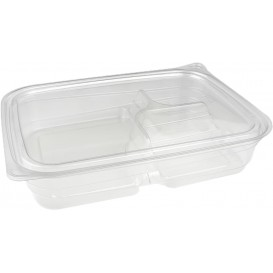 Plastic Deli Container PET 3C 700ml 22x16x4cm (300 Units)