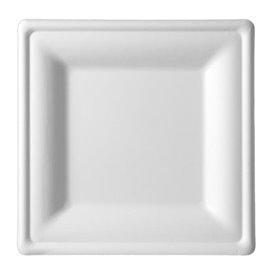 Sugarcane Plate Square shape White 20x20 cm (25 Units)