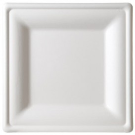 Sugarcane Plate Square shape White 26x26 cm (10 Units)