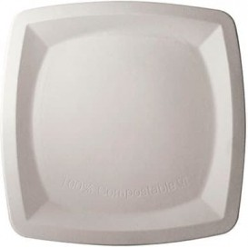 Sugarcane Plate Square shape White 25 cm (500 Units)