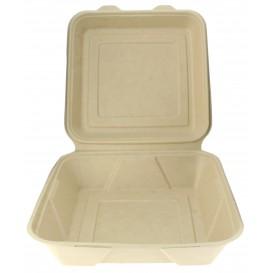 """Sugarcane Hinged Container """"Menu Box"""" 23,5x23,5x7,8cm (200 Units)"""