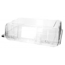 Plastic Hinged Bakery Container PET 25x17x8cm (220 Units)