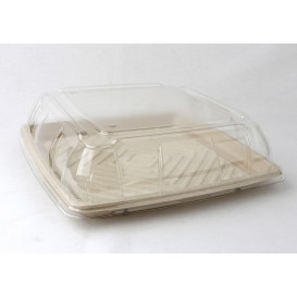 Sugarcane Tray Square Shape Natural 31x31cm (25 Units)