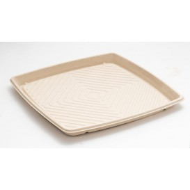 Sugarcane Tray Square Shape Natural 36x36cm (25 Units)
