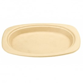 Sugarcane Tray Natural 23,3x16,5x2cm (800 Units)
