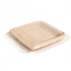Plastic Lid PP for Container 23cm (25 Units)
