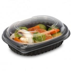Plastic Container PP Rectangular Shape 250ml 14,2x11,1x3,1cm (80 Units)