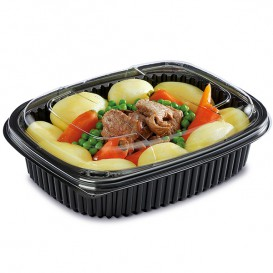 Plastic Container PP Rectangular Shape 1000ml 21,5x17x5cm (320 Units)