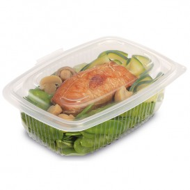 Plastic Container Microwave PP Transparente 600ml 18,5x13,5cm (50 Units)