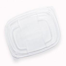 Plastic Lid Translucent Container PP 250/350 and 450ml 14,2x11,1x2cm (20 Units)
