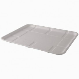 Sugarcane Tray White 26,8x21,6cm (50 Units)