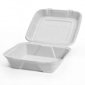 """Sugarcane Hinged Container """"Menu Box"""" White 24x23x7,7cm (50 Units)"""