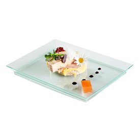 Plastic Tray PS Extra Rigid Water Green 13x18cm (4 Units)